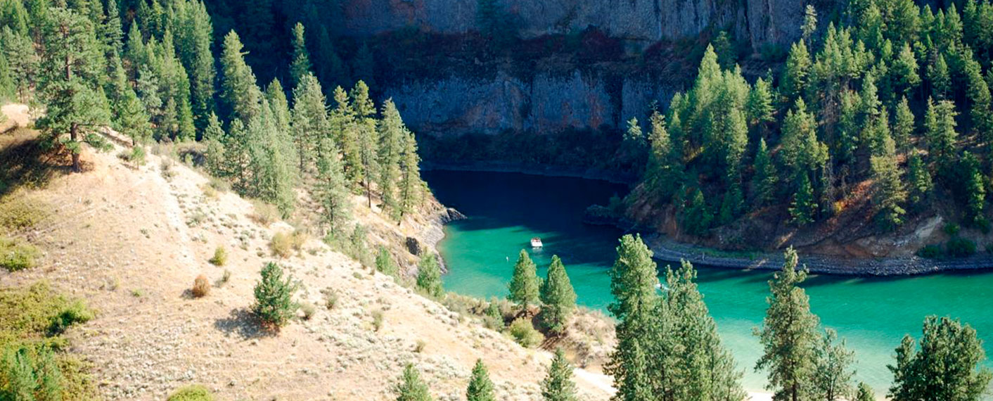 Aerial View of Lake with Pine Trees | Gallery | Lake Roosevelt Adventures